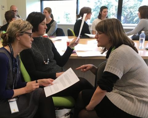 Professionals discussing views and ideas at the workshop