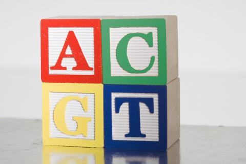ACGT childrens building blocks